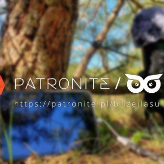 Profil blizejlasu.pl w Patronite