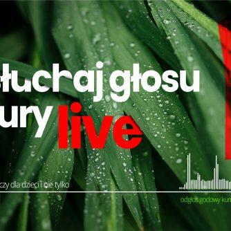 Posłuchaj głosu natury live - blizejlasu.pl